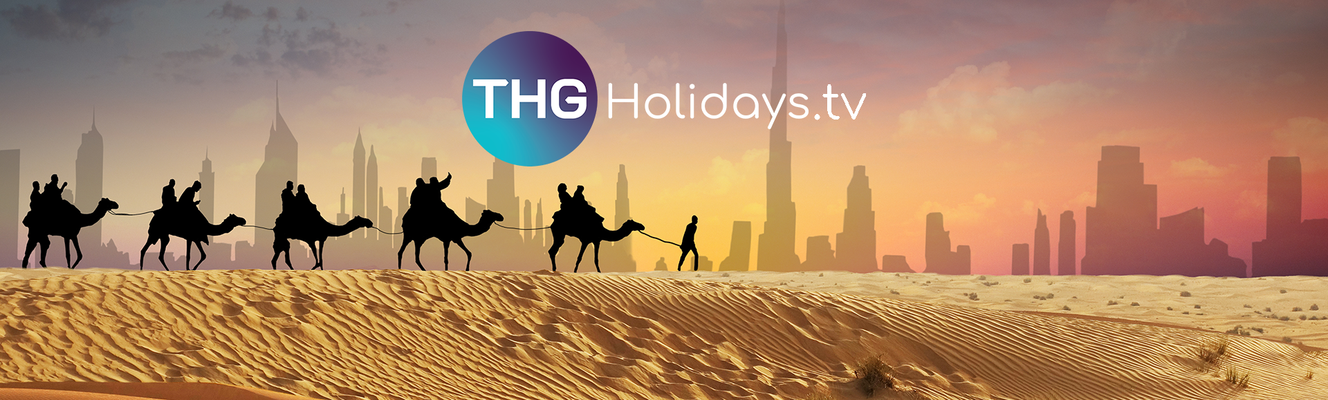 Camels in desert with THG TV logo